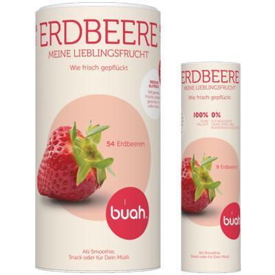 buah erdbeere pur
